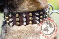 【大型犬 首輪】マリノアにぴったりのデザインカラー