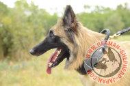 犬訓練用マズルガード