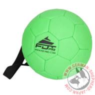大型犬 おもちゃボール ハンドル付き 径は15cm グリーン