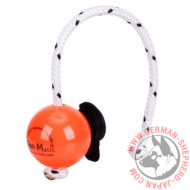 犬訓練用トレーニングポーチ(小型)