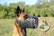 大型犬用オリジナル首輪リードセット